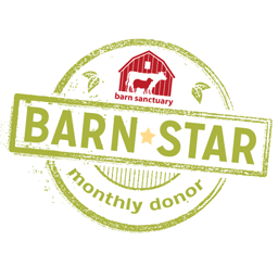 Logo for Barn Star